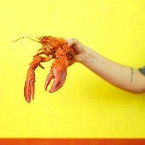 Quand peut-on introduire les fruits de mer dans l'alimentation de bébé ?
